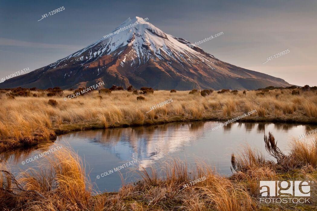 Stock Photo: Mt Egmont / Taranaki, late afternoon reflection in small tarn set among tussock slopes of Pouakai range, Taranaki.