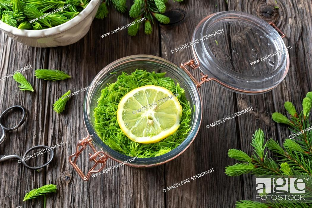 Imagen: A jar filled with young spruce tips, lemon and sugar, to prepare homemade herbal syrup against cough.