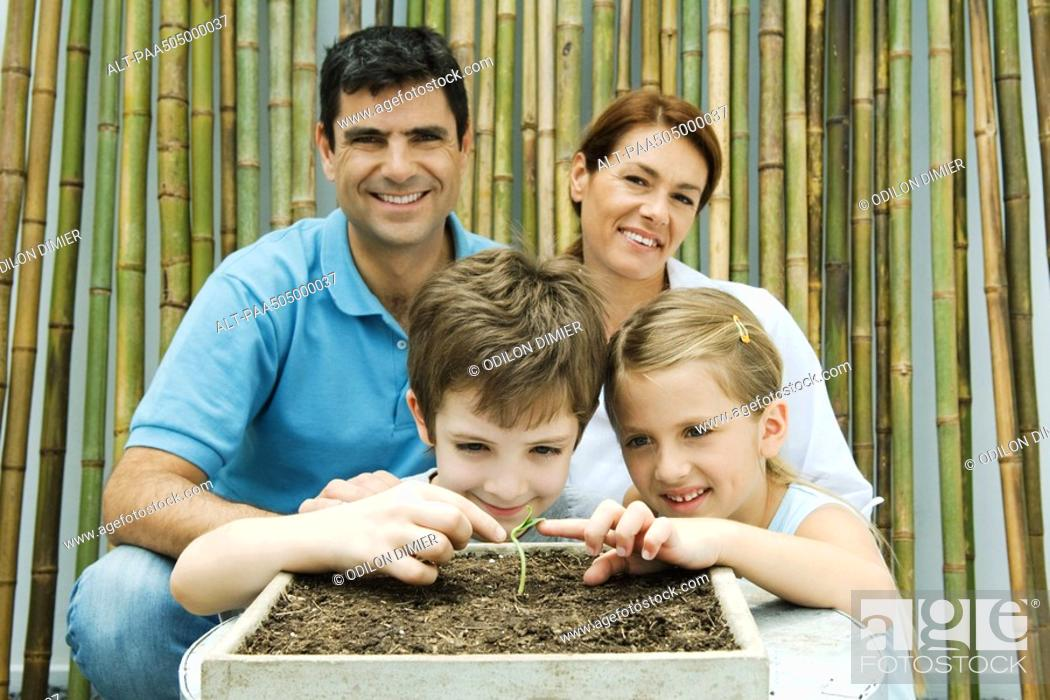 Stock Photo: Family together, parents smiling at camera, children touching potted seedling.