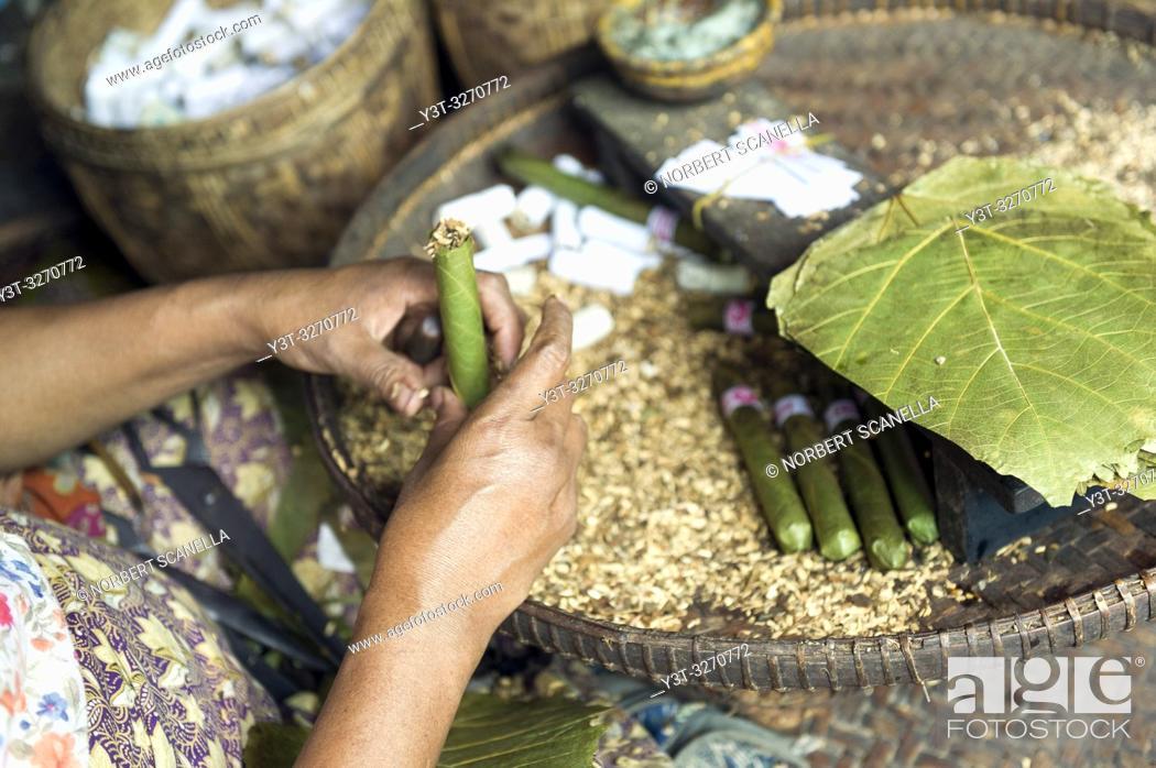 Stock Photo: Myanmar (ex Birmanie). Bagan, région de Mandalay. Village de Nyaung-U. Femmes birmane travaillant à la fabrication de cheroots le cigare birman / Myanmar (ex.