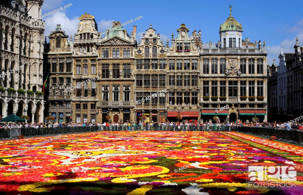 Stock Photo: Carpet of flowers on city hall square Guildhalls Grote Markt Brussels Belgium Grand-Place.