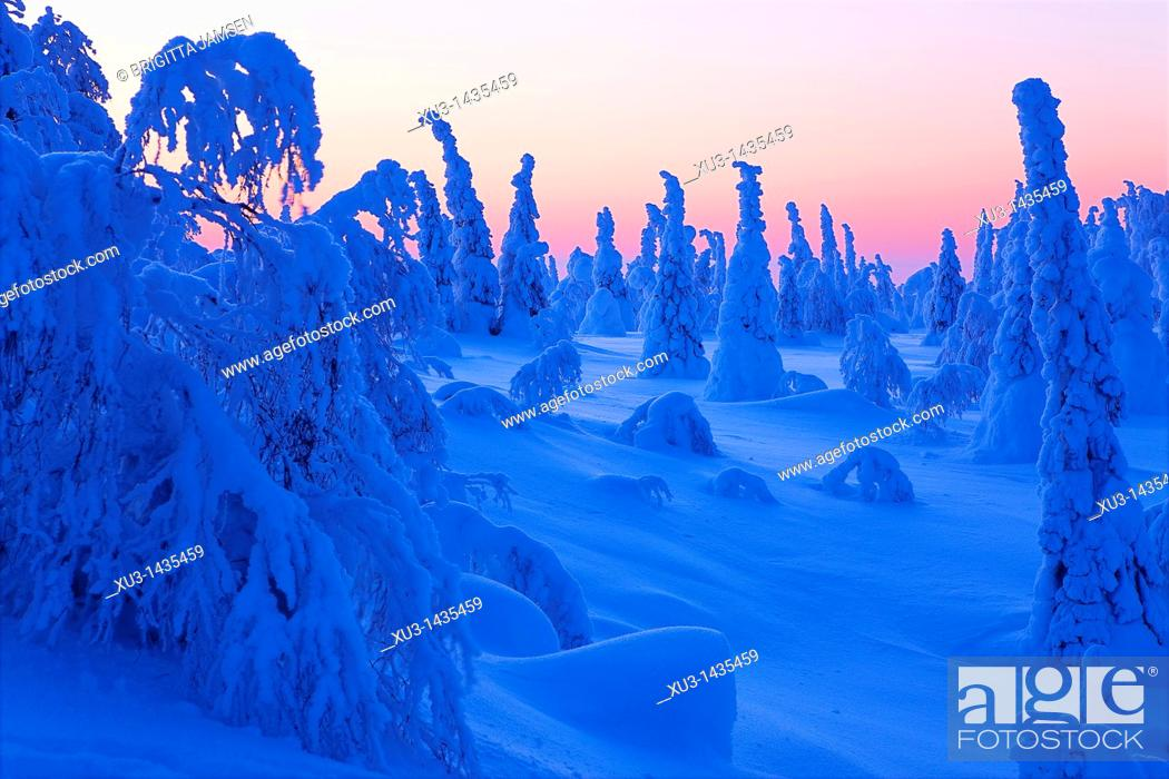 Stock Photo: Winter landscape. Scandinavia.