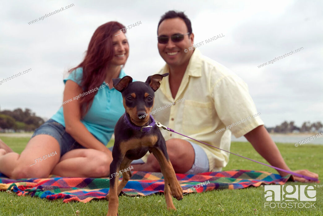 Stock Photo: Couple playing with small dog at park in San Diego, CA.