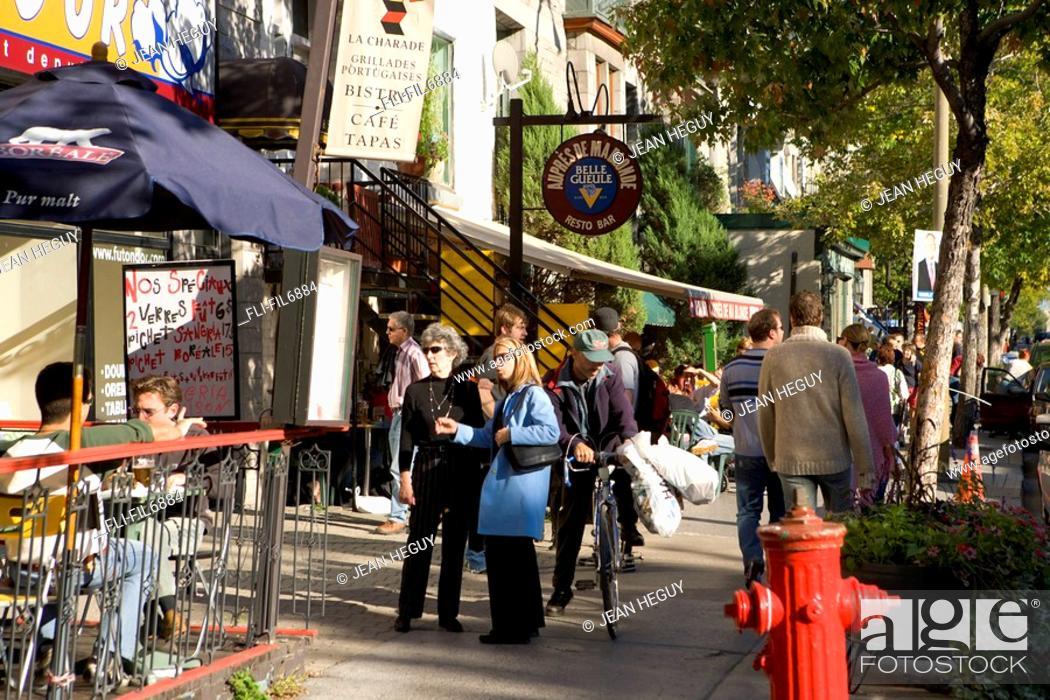 Stock Photo: St  Denis Street, Montreal, Quebec.