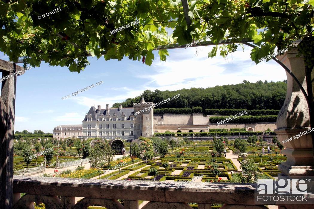 Stock Photo: ornamental garden Chateau de Villandry, France.