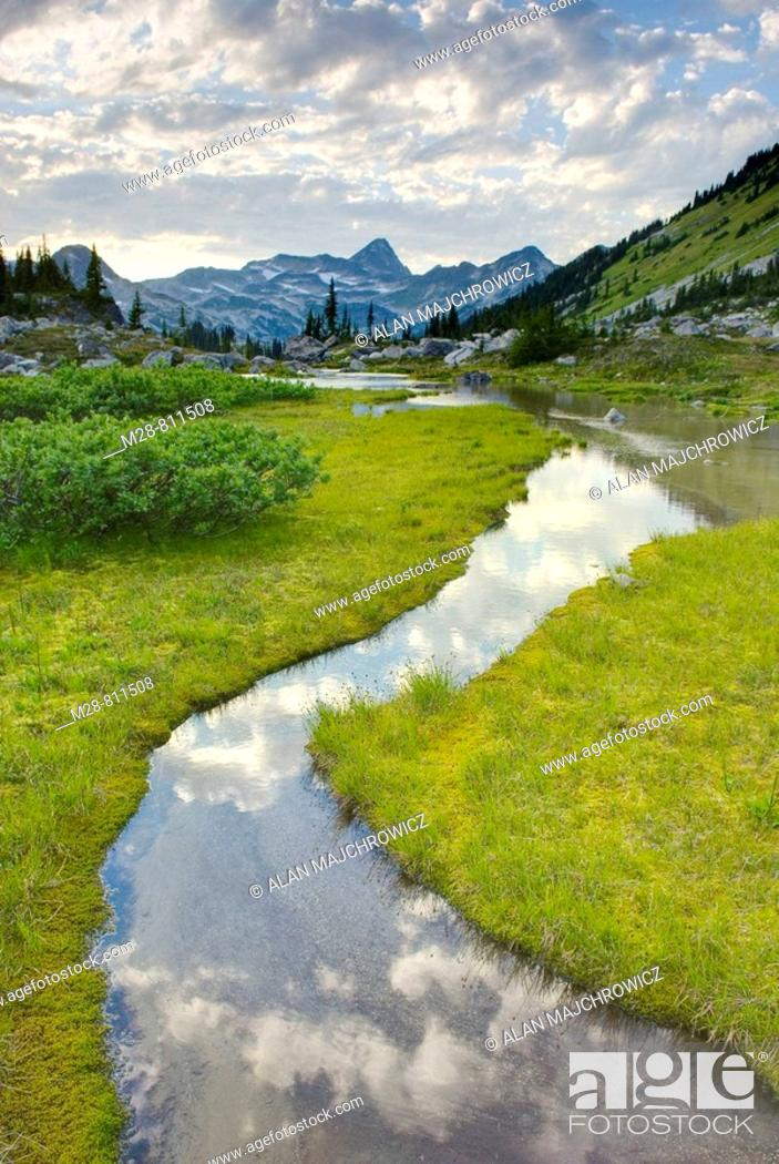 Stock Photo: Eveing clouds reflected in stream flowing in an alpine basin of Mount Rohr, Coast Mountains British Columbia Canada.