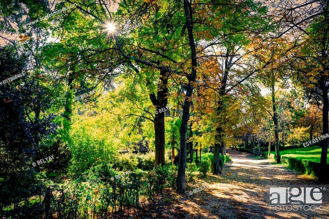 Stock Photo: Garden in Madrid, Spain - november.