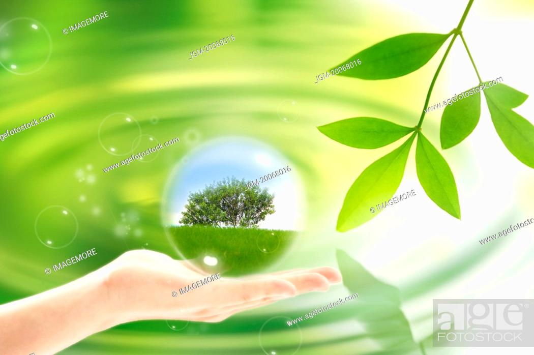 Stock Photo: Lohas, Environmental Conservation, Digitally generated image of human hand holding a sphere with tree.