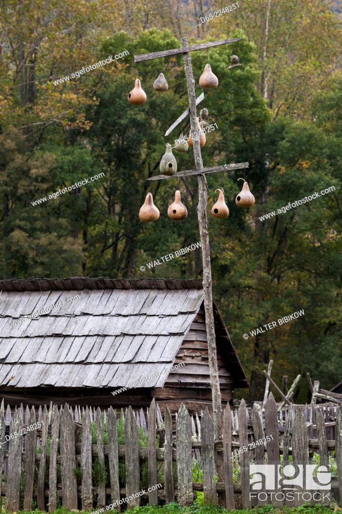 Stock Photo: USA, North Carolina, Great Smoky Mountains National Park, Mountain Farm Museum, autumn, gourd tree.