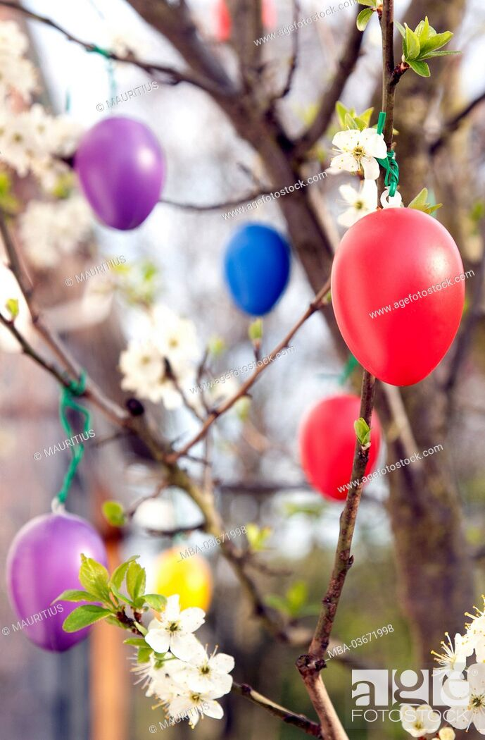 Stock Photo: Spring, Easter, Easter eggs, party, tree,.