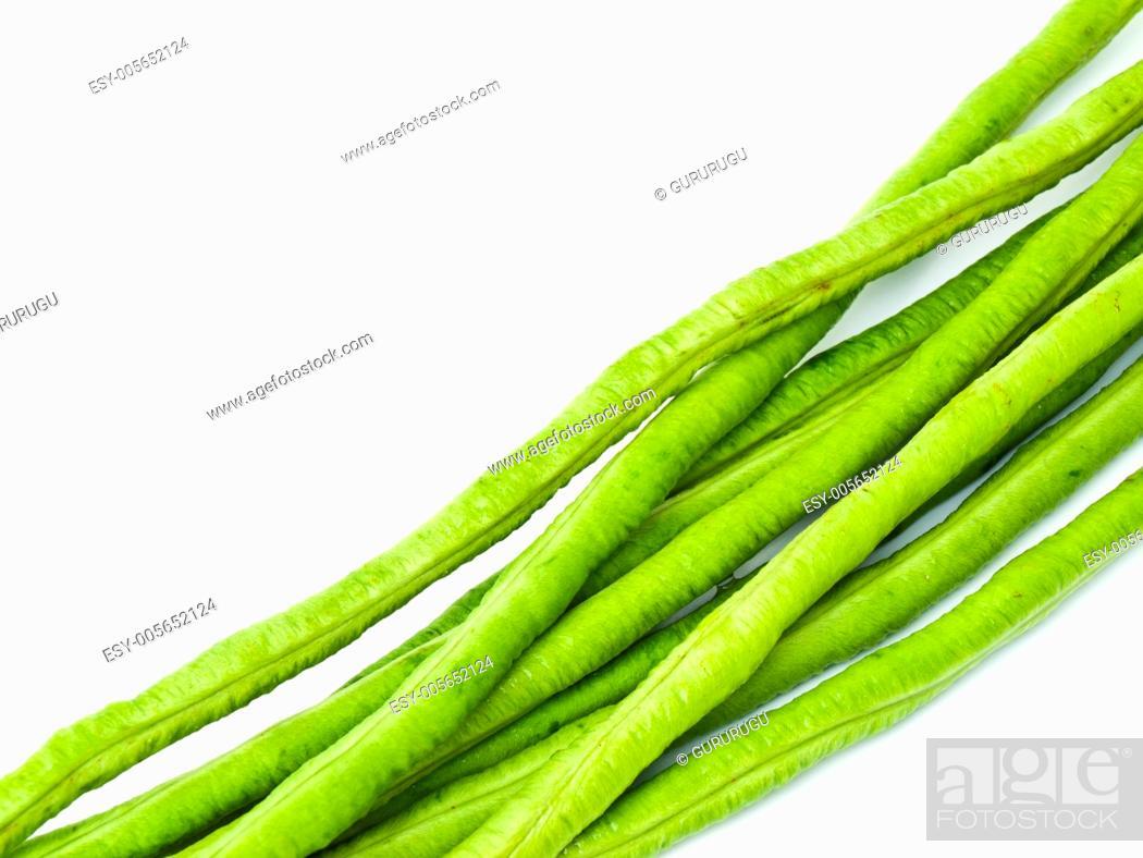 Stock Photo: Yardlong bean, Vigna unguiculata subsp. sesquipedalis, isolated on white background.