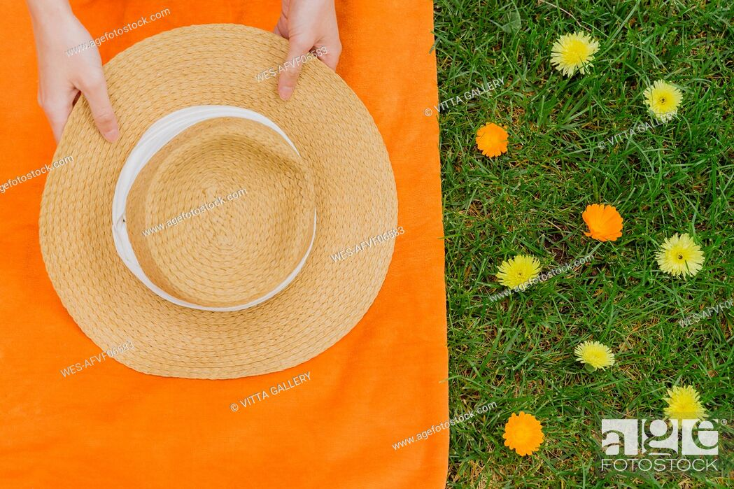 Stock Photo: Hands of woman holding hat on picnic blanket by flowers at back yard.