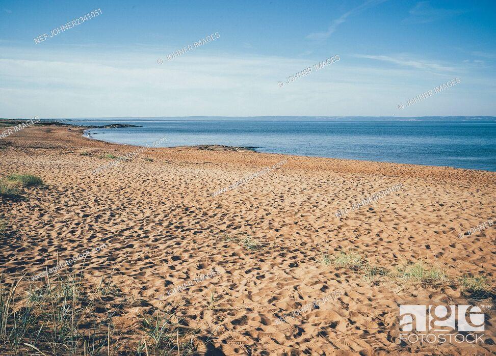 Stock Photo: Sandy beach.