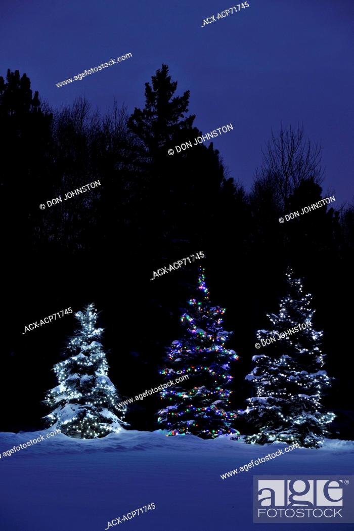 Outdoor Holiday Christmas Lights At Night Greater Sudbury Lively