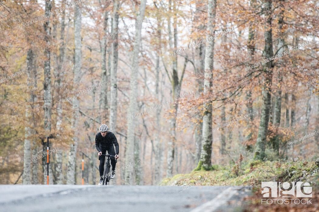 Imagen: young cyclist boy riding alone at the forest in autumn. Aralar Natural Park, Navarra, Spain.