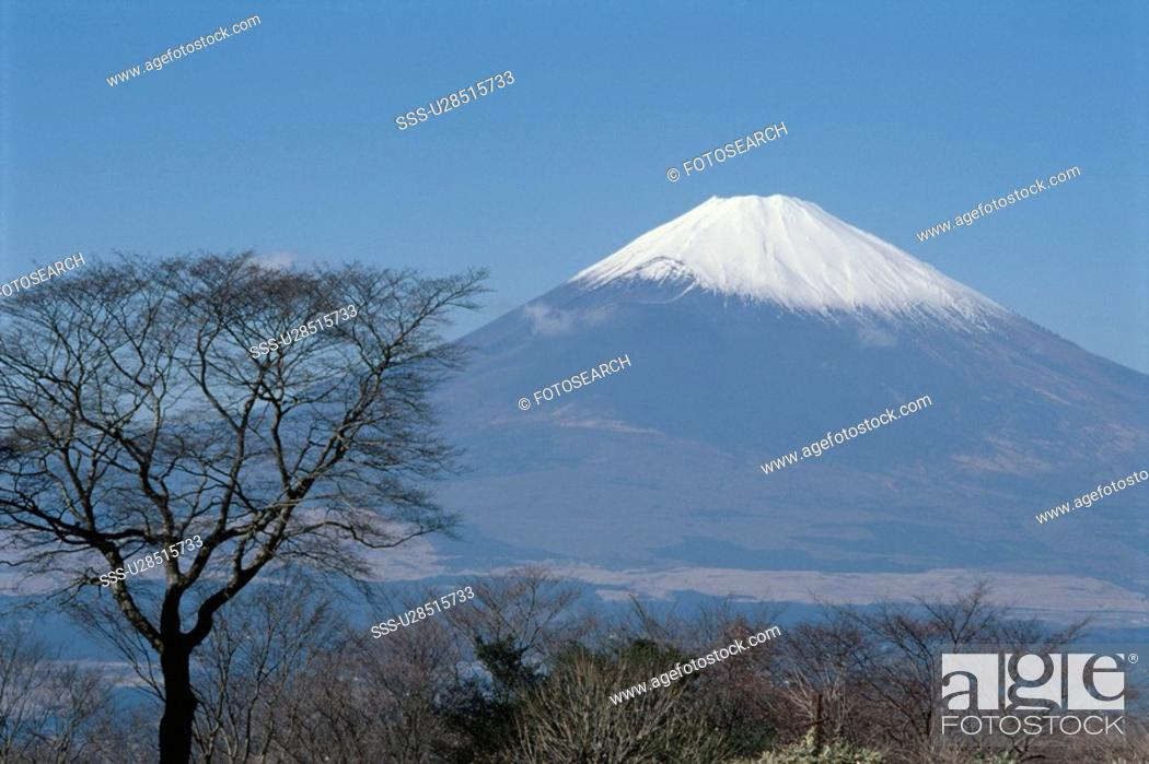 Stock Photo: Mt. Fuji.