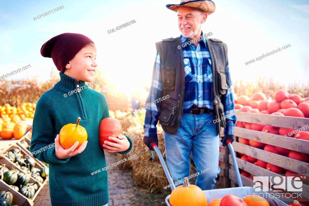 Stock Photo: Farmer and grandson at pumpkin farm.