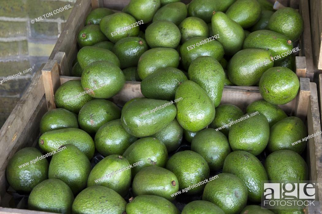Stock Photo: Avocados for sale in wooden boxes on a market stall.
