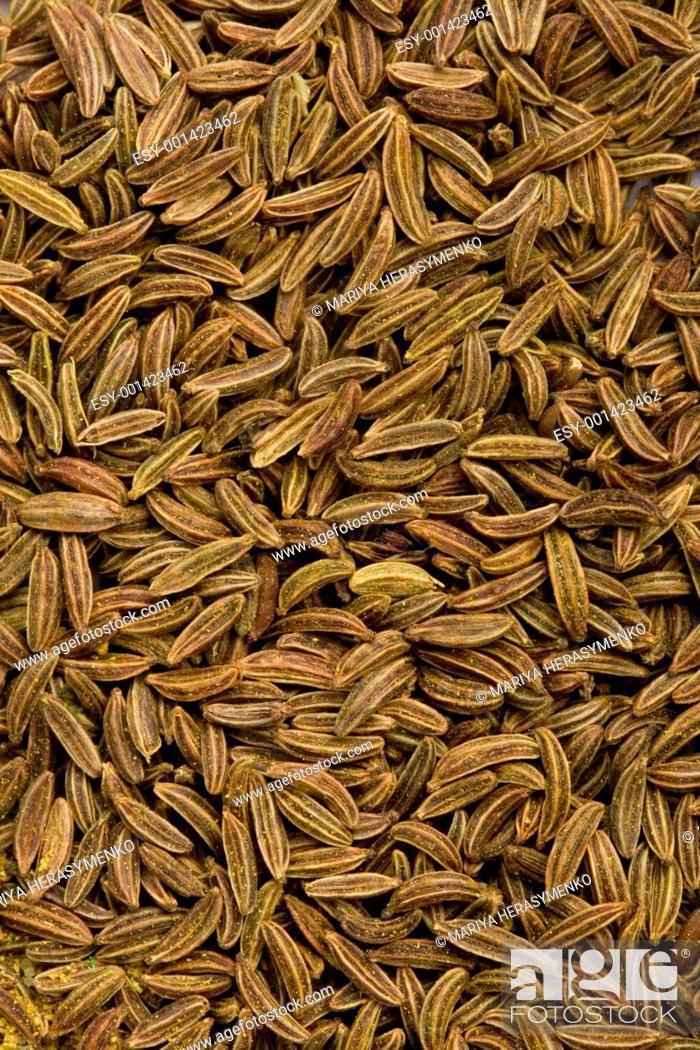 Stock Photo: caraway seeds.