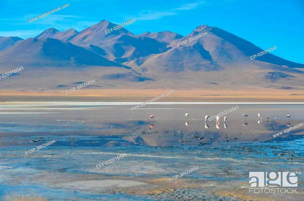 Imagen: Gorgeous landscapes of Sur Lipez, South Bolivia.