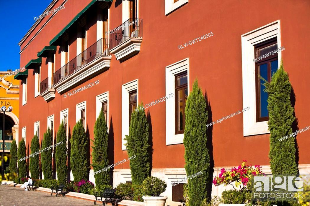 Stock Photo: Trees in front of a government building, Palacio De Gobierno, Aguascalientes, Mexico.