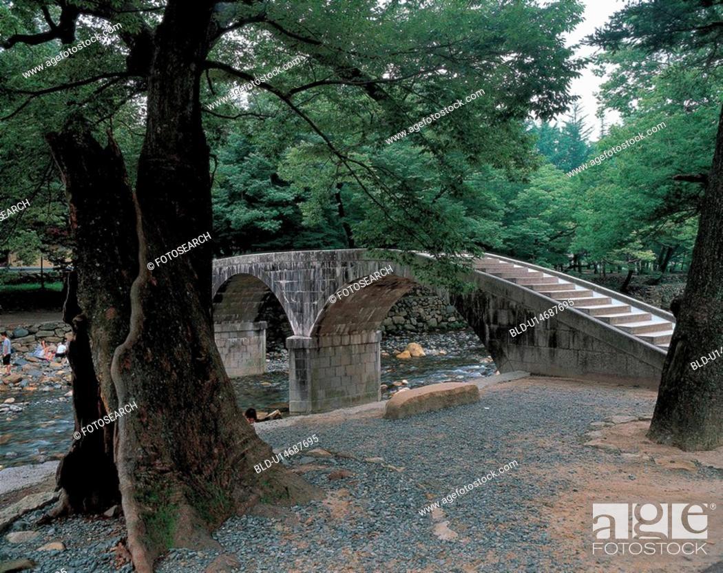 Stock Photo: trees, bridge, plants, plant, tree, scenery.