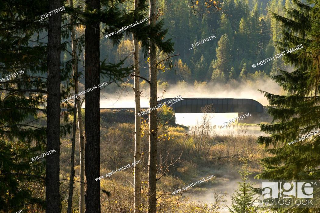 Stock Photo: Canada, BC, Cranbrook. Bridge crossing river and marshland in foggy morning light.