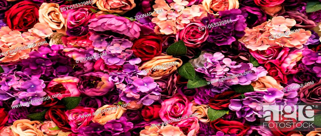 Stock Photo: Many different pink flowers background texture, romantic blurred design beauty purple roses.