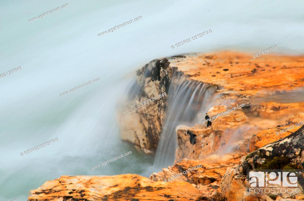 Stock Photo: Tokumm Creek edge along Marble Canyon Trail, Kootenay National Park, British Columbia, Canada.