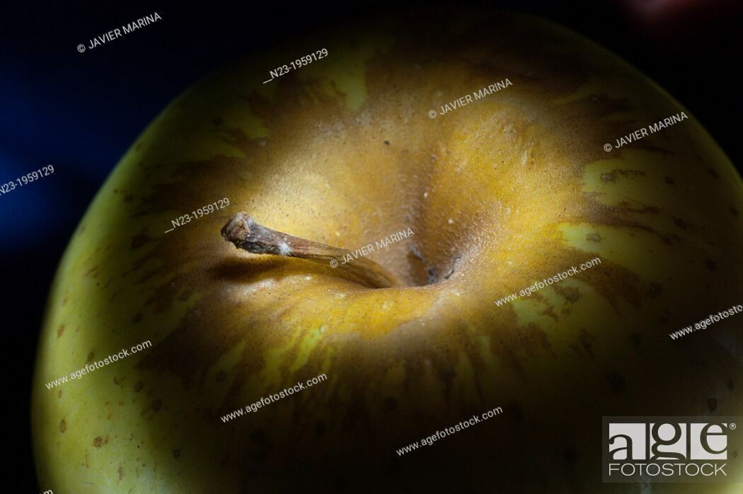 Stock Photo: GOLDEN APPLE, VALENCIA, SPAIN.