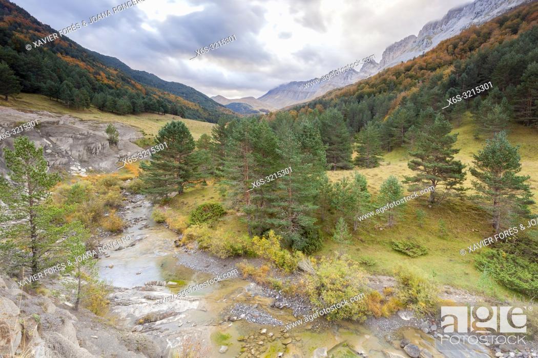 Stock Photo: Zuriza Valley, Huesca, Spain.