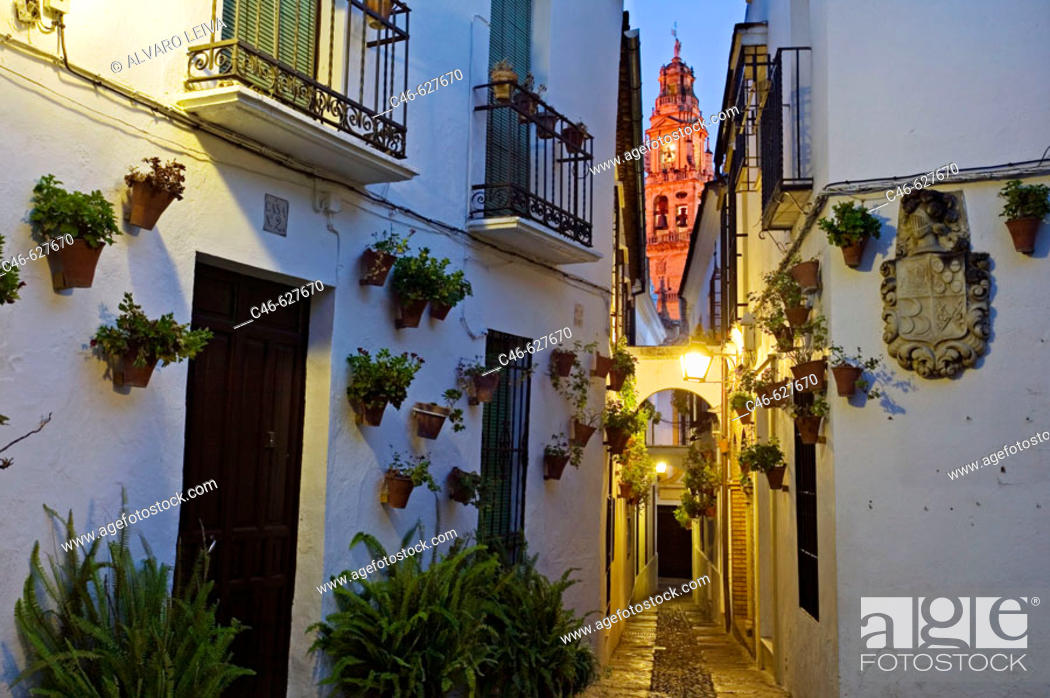 Stock Photo: Street and Minaret tower of the Great Mosque, Córdoba. Andalusia, Spain.