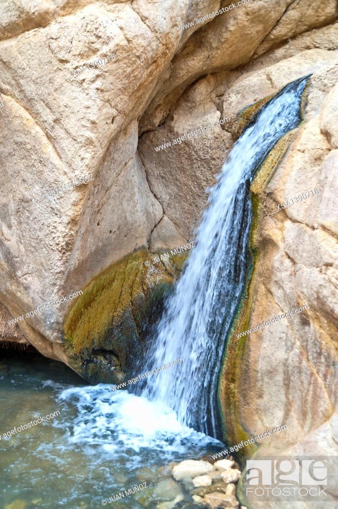 Stock Photo: Oasis, Chebika mountain. Tunisia. Africa.