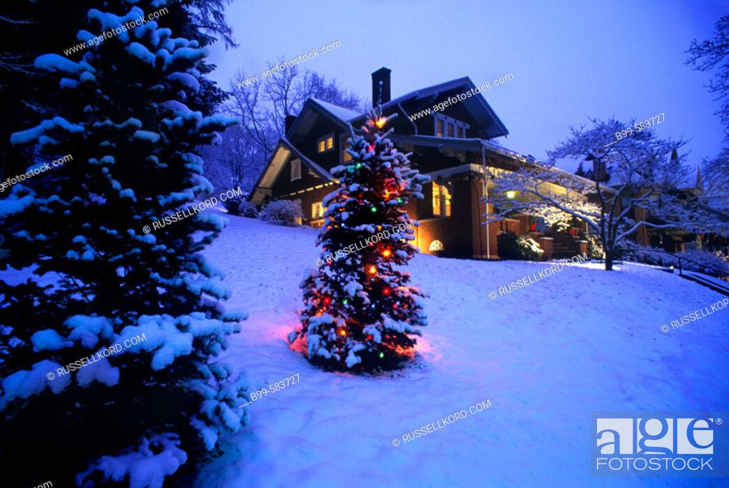 Stock Photo: Snow, Christmas Tree & House, Brookville Historic District, Pennsylvania, Usa.
