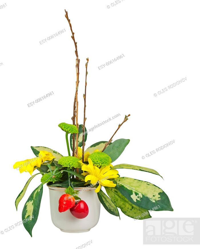 Stock Photo: Bouquet from flowers, berries and pussy willows branches in vase isolated on white background.