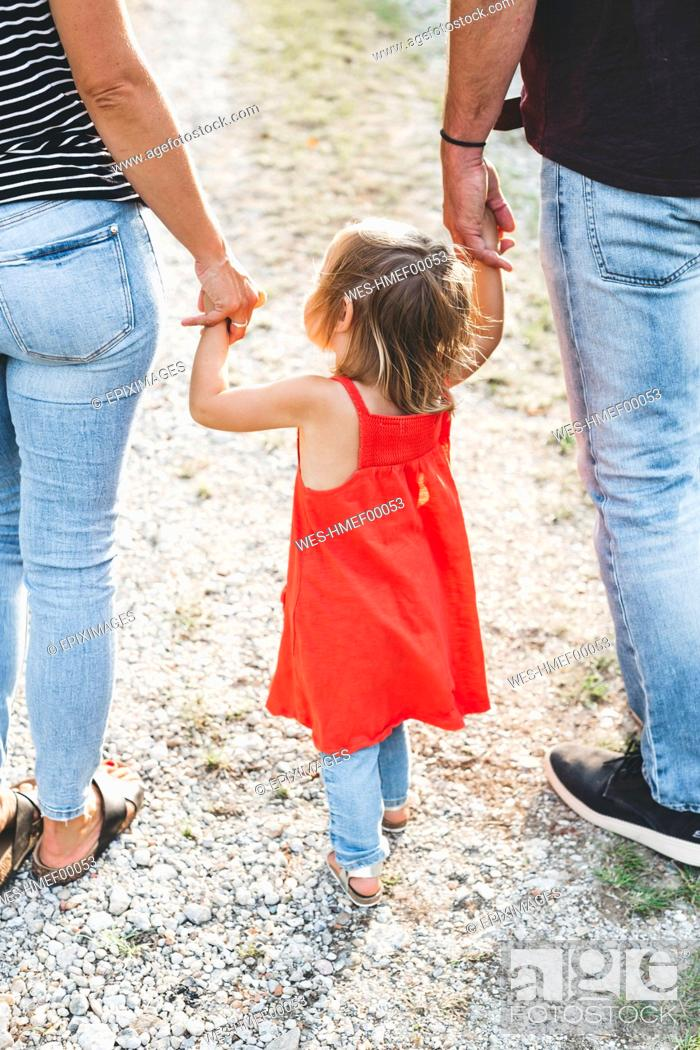 Stock Photo: Girl walking on parent's hands on a field path.