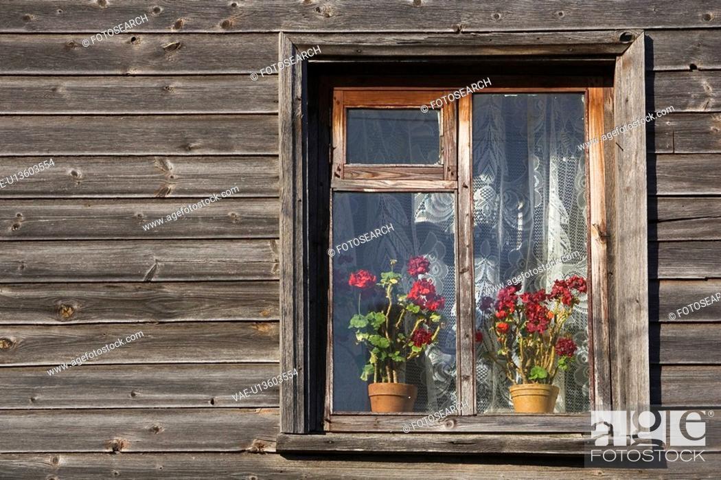 Imagen: Day, Outdoors.