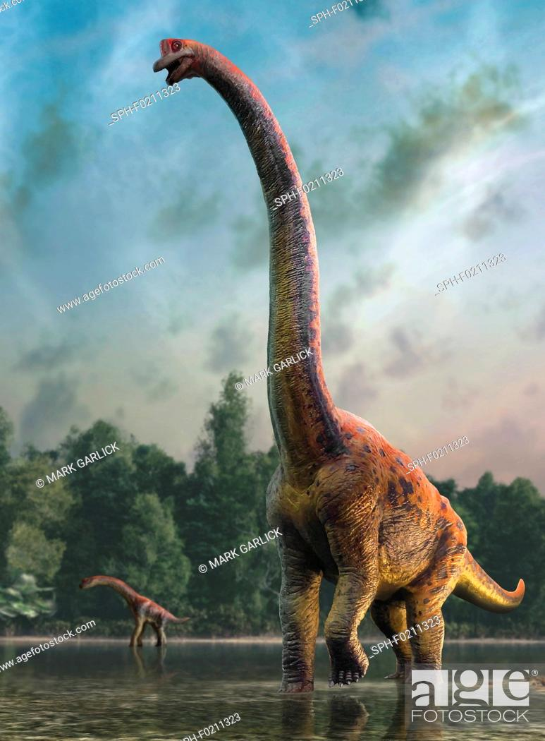 Stock Photo: Giraffatitan, illustration.