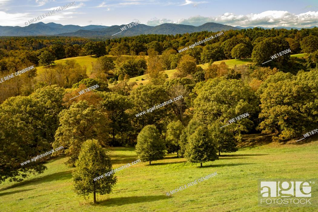 Stock Photo: VIew of Biltmore Estate property in the autumn, large private estate built by George Vanderbilt, tourist attraction in Asheville North Carolina.