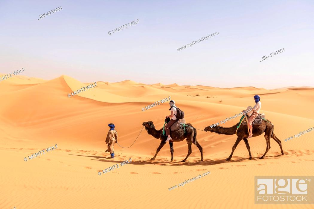 Stock Photo: Caravan with two dromedaries (Camelus dromedarius) in sand dunes, desert Erg Chebbi, Merzouga, Sahara, Morocco.
