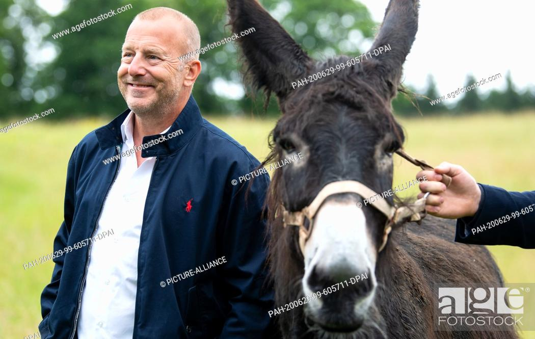Stock Photo: 29 June 2020, Bavaria, Weßling: Heino Ferch, actor, takes part in a press tour at Circus Krone Farm and stands next to a donkey.