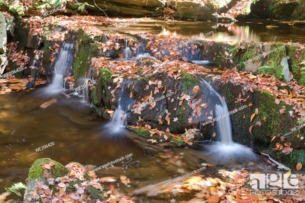 Stock Photo: Waterfalls in the Great Smoky Mountains National Park.
