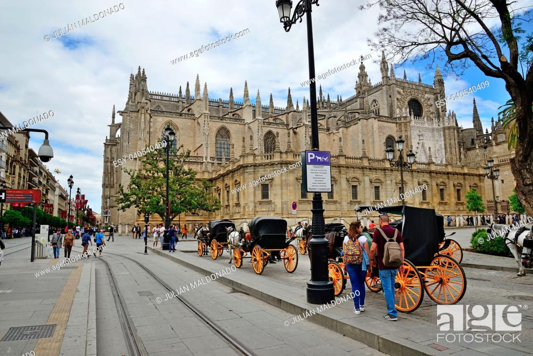 Stock Photo: Horse carriage stop with the Cathedral of Seville in the background.