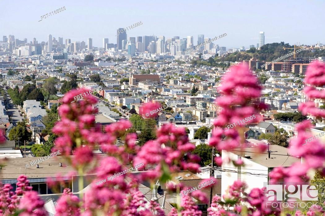 Stock Photo: City view, San Francisco, California, USA.