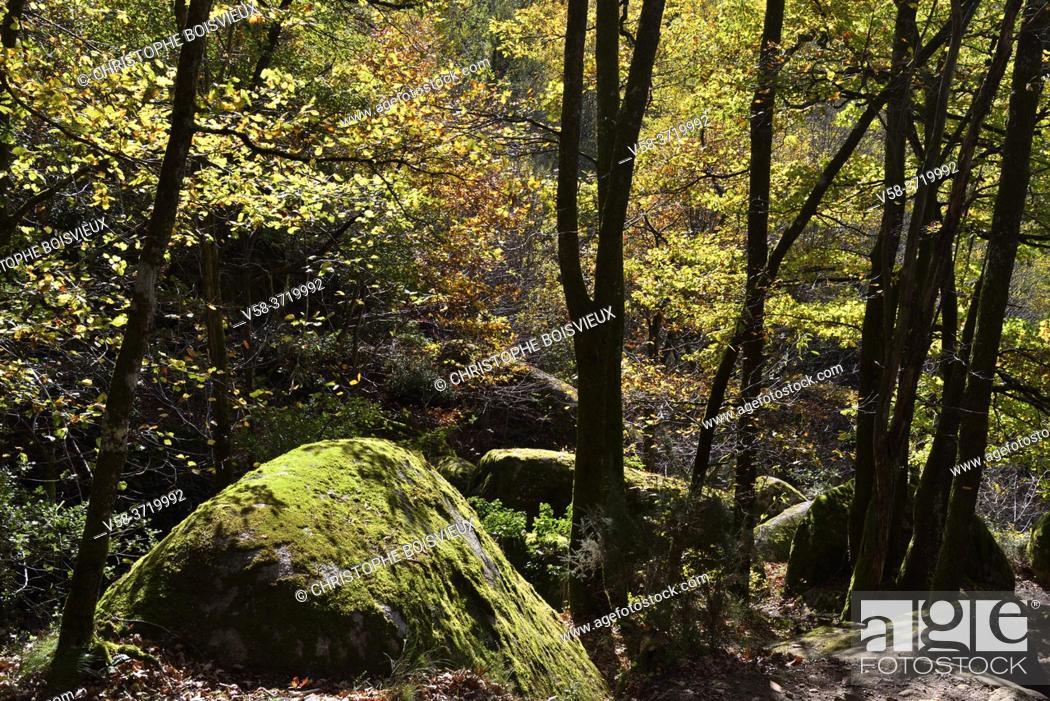 Stock Photo: France, Tarn, Sidobre region, Chaos de la Rouquette, The rock formations in autumn .