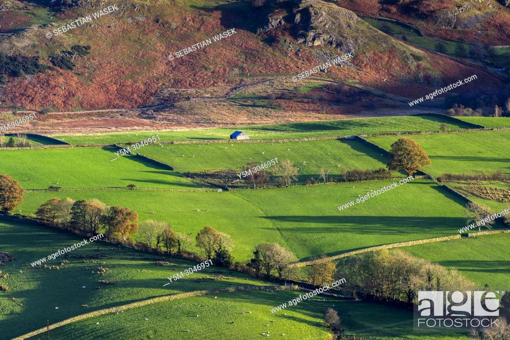 Stock Photo: View from Latrigg towards High Rigg, Lake District National Park, Cumbria, England, United Kingdom, Europe.