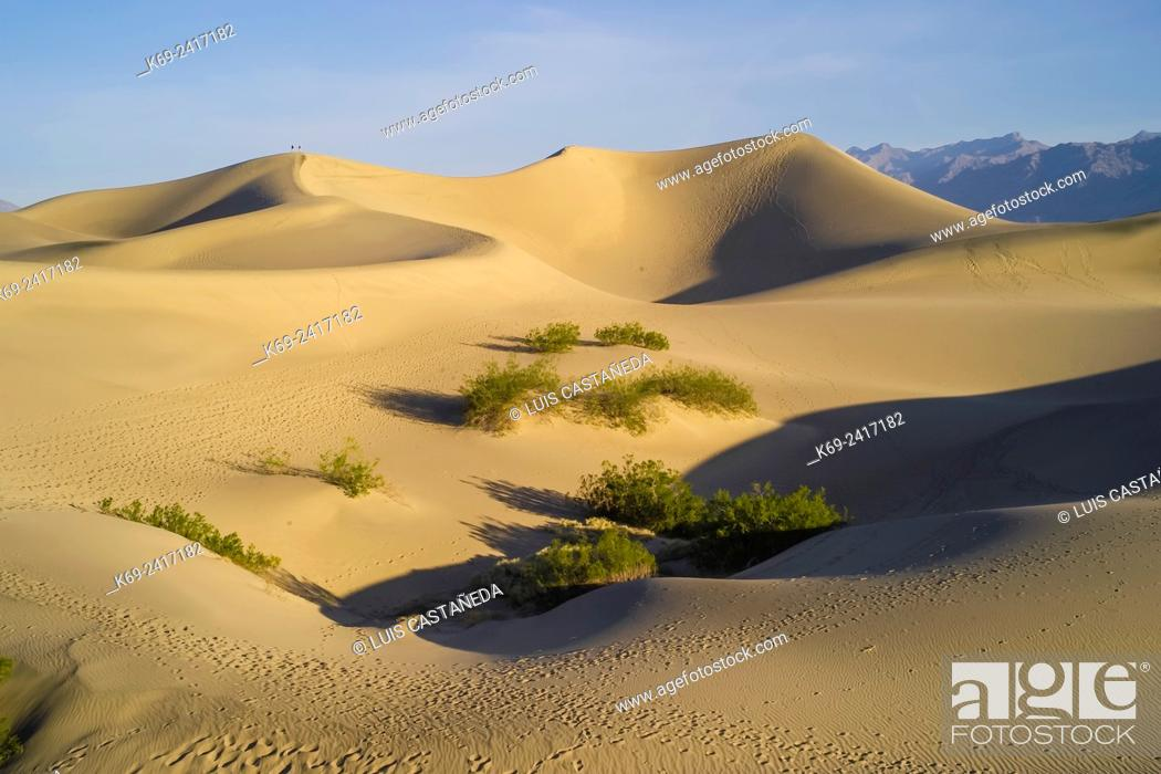 Stock Photo: Sand Dunes. Stovepipe Wells. Death Valley Natl. Park. California/Nevada. USA.