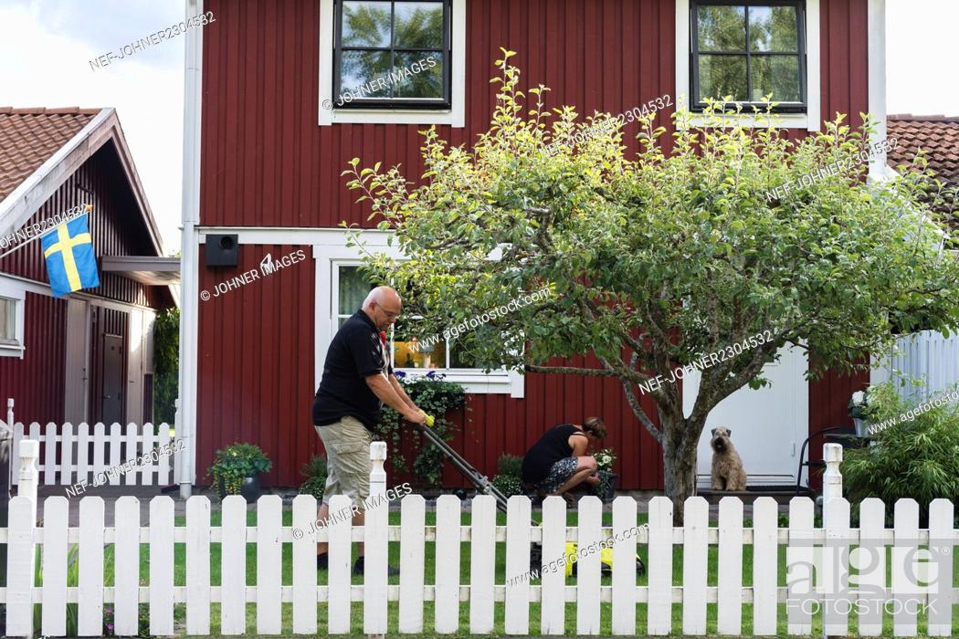 Stock Photo: Man and woman taking care of garden.