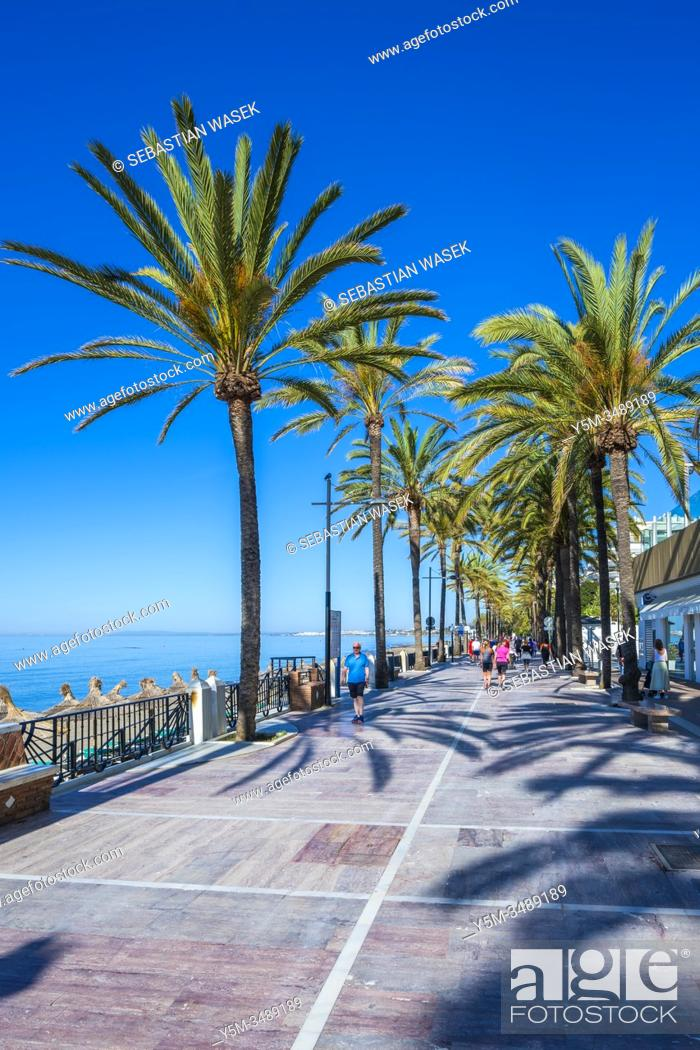Stock Photo: Paseo Maritimo seaside promenade, Marbella, Andalucia, Spain, Europe.