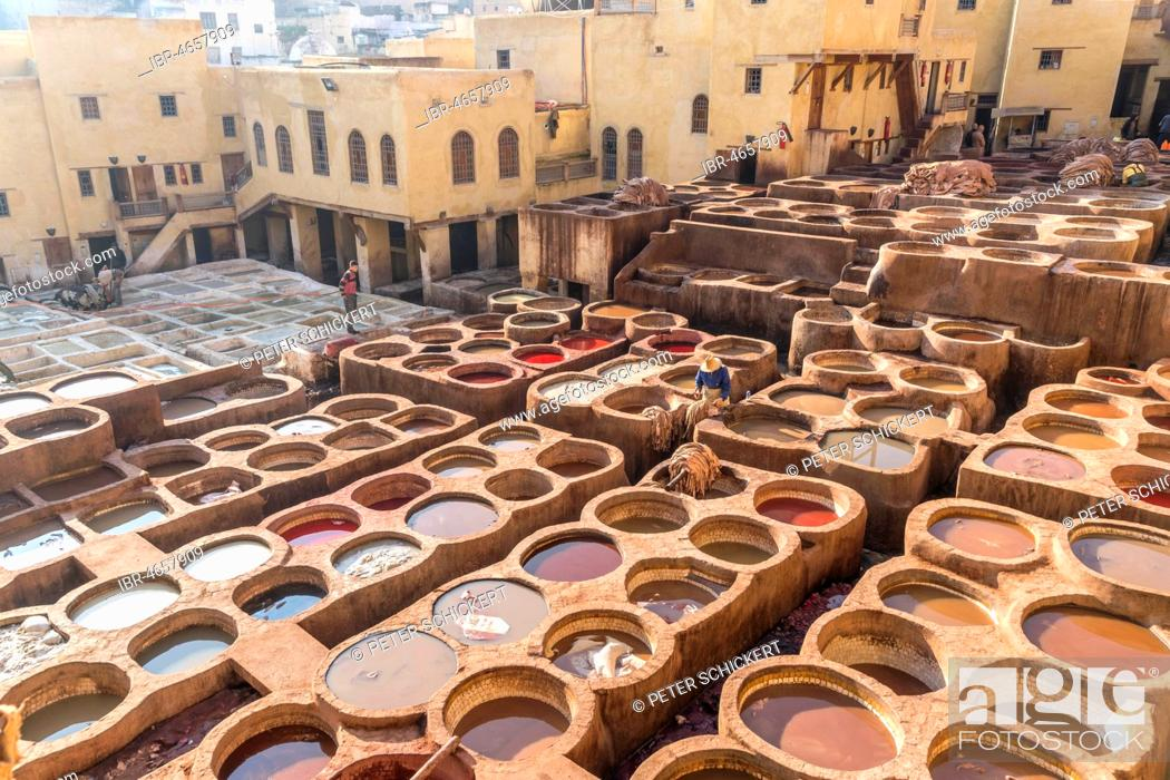 Photo de stock: Leather dyeing tanks, dyeing plant, Tannerie Chouara tannery, Fes el Bali tannery and dyeing district, Fez, Morocco.